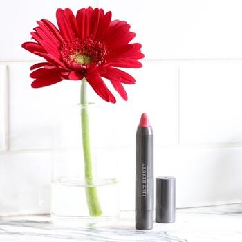 Juice Beauty - PHYTO-PIGMENTS Crayon Dudak Kalemi, 2.7 gr. Salinas (Gül Kurusu) (1)